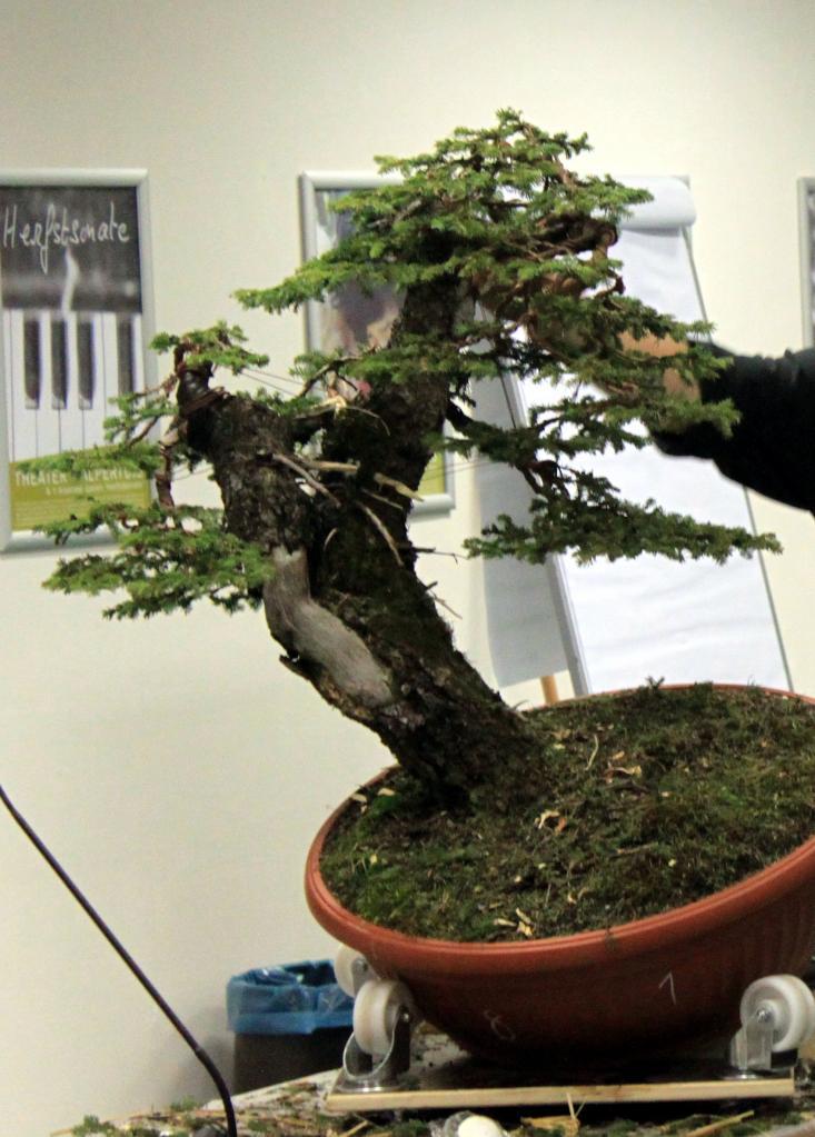 Plant 3-2