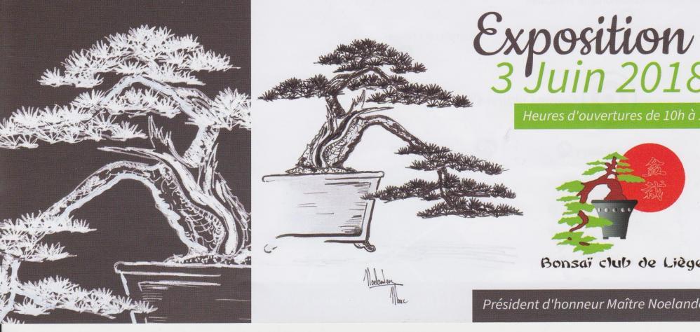 Folder expo 2018 1 0001